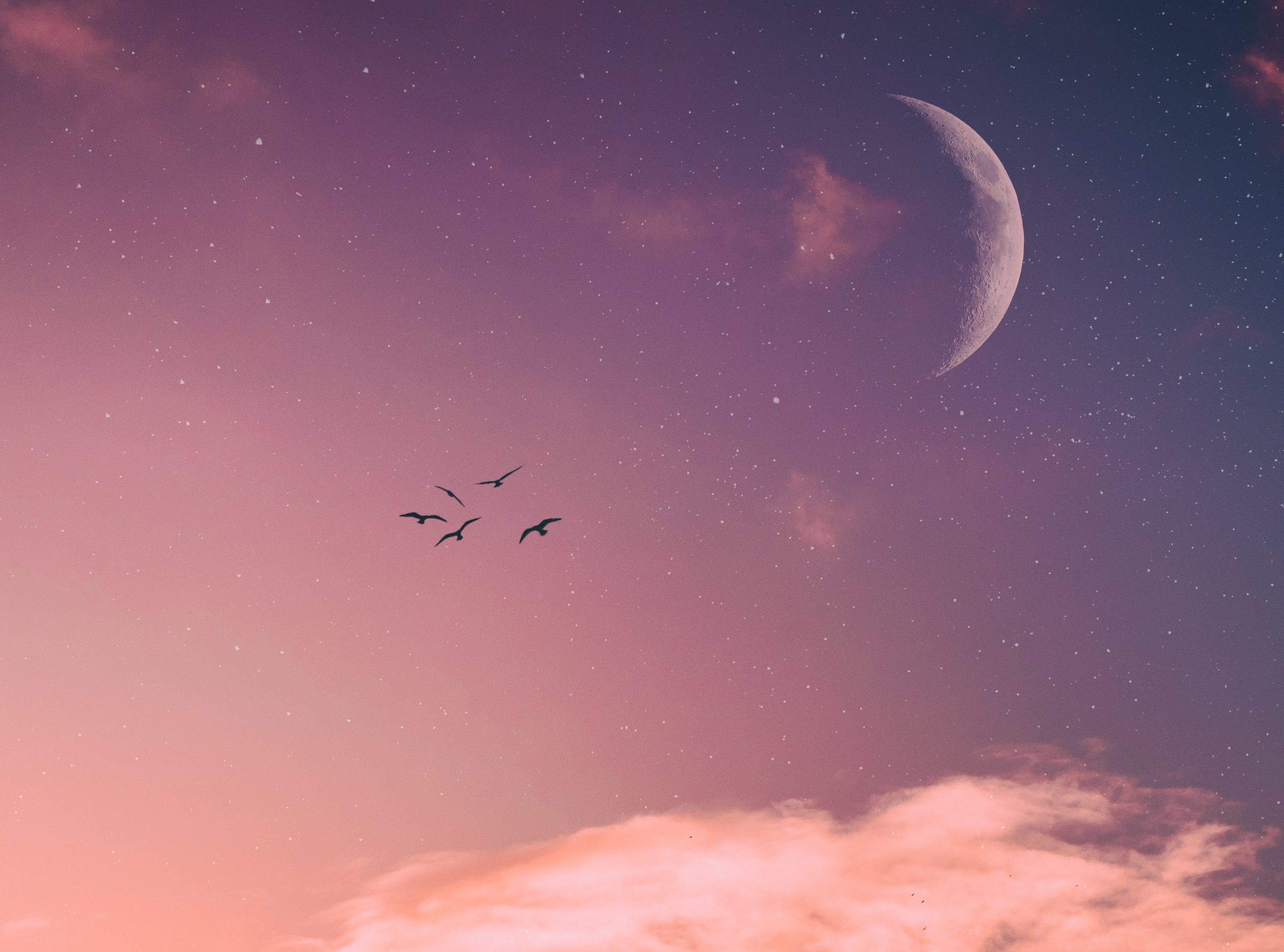 PsychicTXT| How the New Moon in Aries (April 5, 2019) Will Affect